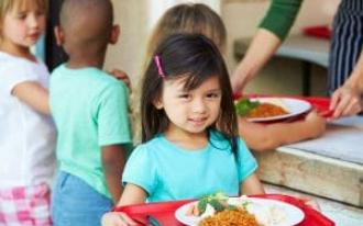 Food for Thought: Missouri Household Food Security and the National School Lunch Program